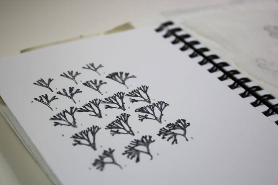 carnet à dessin maä algues